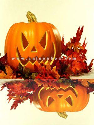 bi ngo trang tri halloween