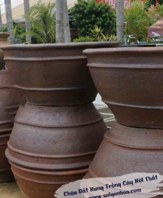 Chau Dat Nung