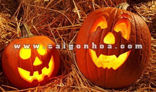 halloween voi bi ngo