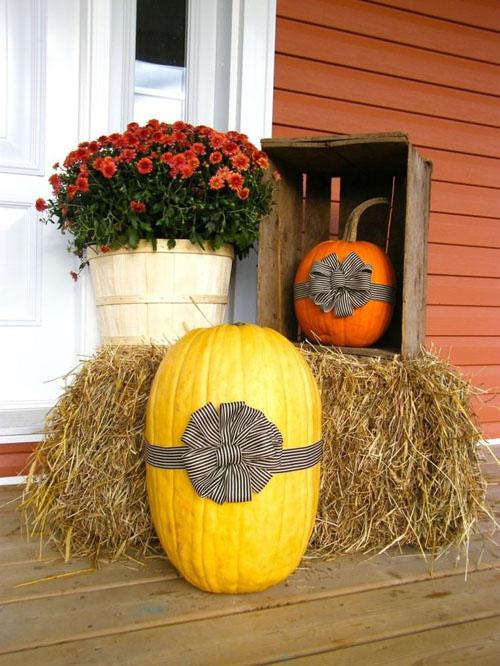 Bi Ngo Hoa Cuc Trang Tri Nha O Ngay Halloween