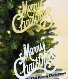 Bo Chu Marry Christmas