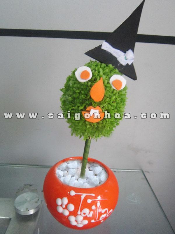 cay may man qua cau phu thuy halloween