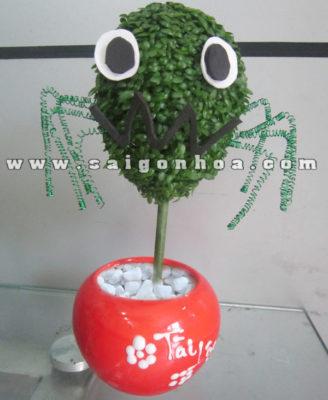 Chau Cay May Man Qua Cau Nhen Halloween