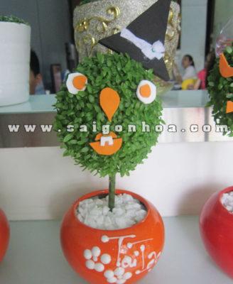 Chau Cay May Man Qua Cau Phu Thuy Halloween
