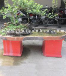Chau Tieu Canh Cay Oi Bonsai 1