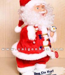 Ong Gia Noel 1
