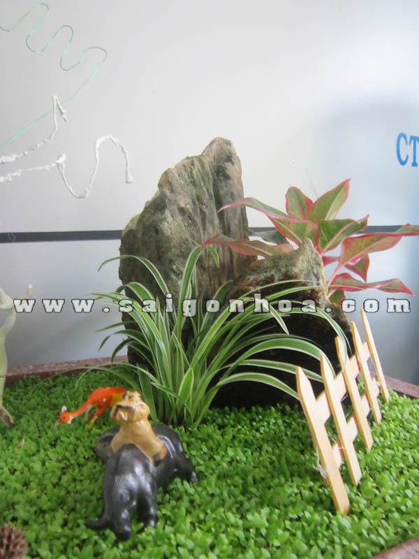 Tieu Canh May Man Lan Ho Diep Chieu Binh Yen Chan Trau