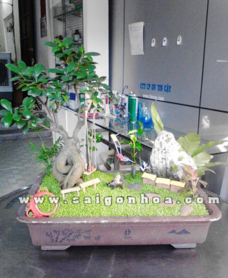 Buc Hoa Dong Que Dai Dien