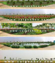 Canh Tao Canh Quan Khu Vuc Dam Trung