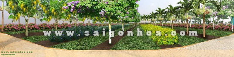 pa - san nền trồng cây theo luống
