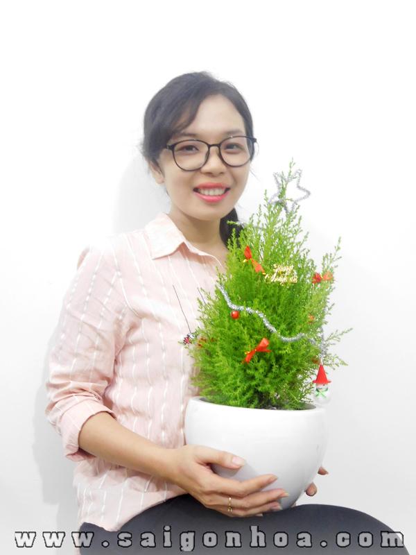 Tung Thom Trang Tri