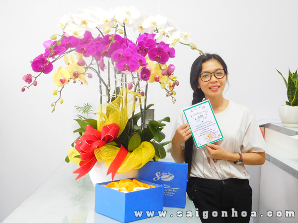 Hoa Lan Ho Diep Tang Bo Am Tra