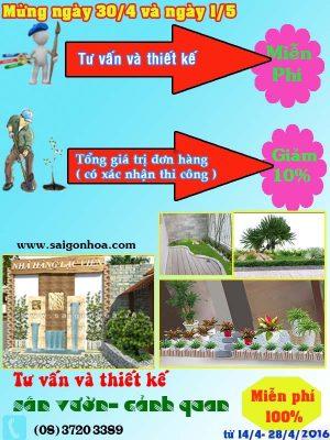 Dịch vụ thi công tiểu cảnh, sân vườn chuyên nghiệp