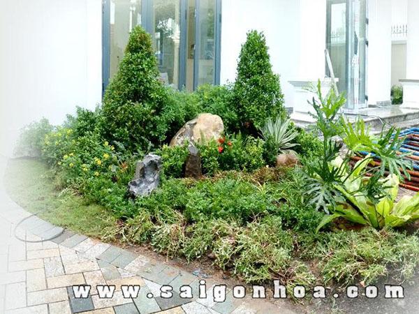 tieu canh san vuon - Thiết kế tiểu cảnh cho sân vườn hiện đại cho nhà bạn