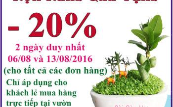 Chuong Trinh Thu 7 Vui Ve