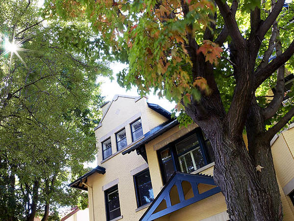 Bottom view of a yellow brick house with very tall trees with green leaves.