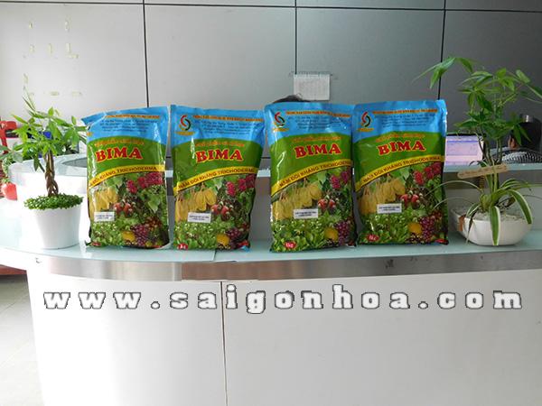 Phan Phoi Phan Bon Bima