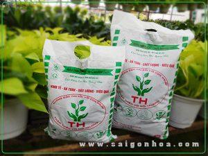 Phan Trun Que 100 Nguyen Chat