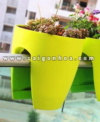 Chau Hoa Kep Ban Cong 1 E1490344407375