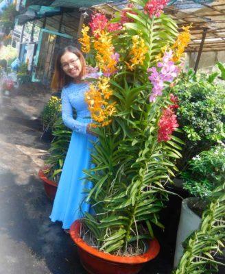 Chau Lan Mokara 1