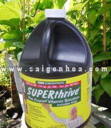Superthrive Hoocmon Kich Thich Sinh Truong