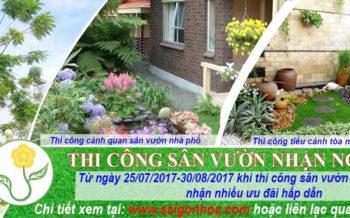 Thi Cong San Vuon Nhan Ngay Uu Dai