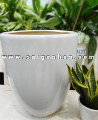 Chau Bom Bat Trang 2