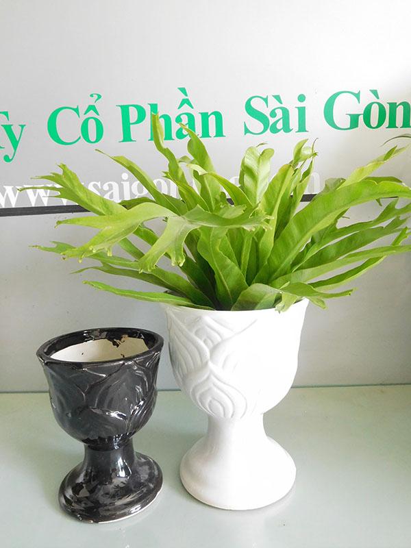 Chau Ly Mini Om Bat Trang
