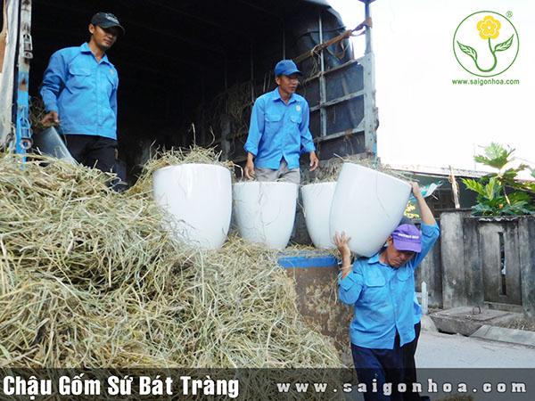 Chau Su Bat Trang