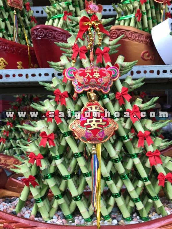 Chau Cay Phat Loc