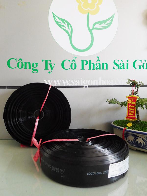 Ong Dep Tuoi Phun Mua