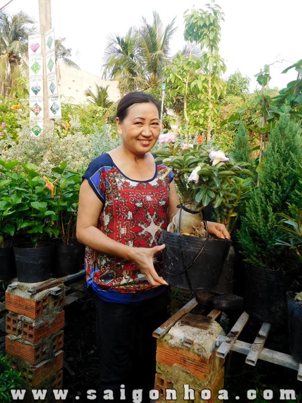 Chau Su Ghep