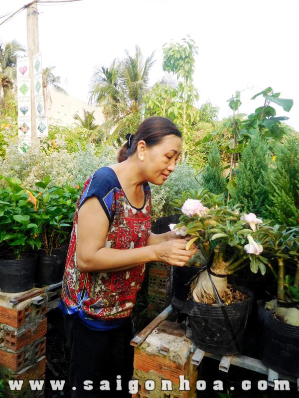 Chau Su Thai