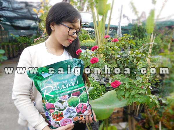 Phan Bon Hoa Hong Tu Nhat