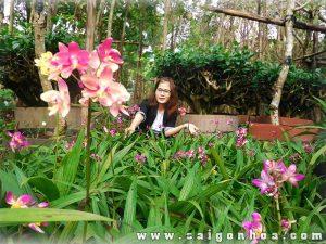 Ngỡ ngàng trước vẻ đẹp của vườn Lan chu đinh