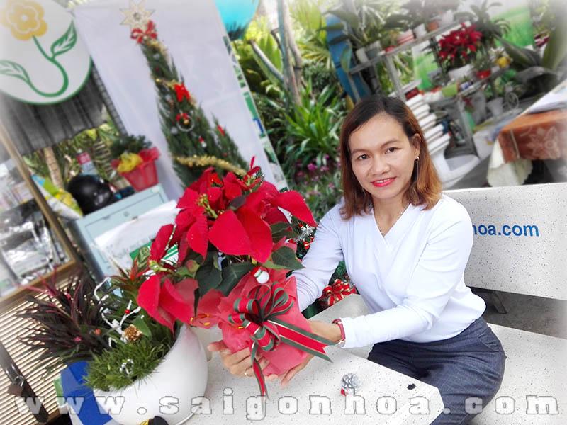 Trang Tri Hoa Trang Nguyen
