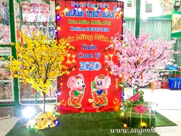 Trang Tri Tieu Canh Tet Xuan Canh Ty