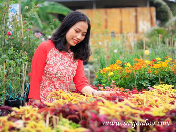 Vuon Uom Kieng La
