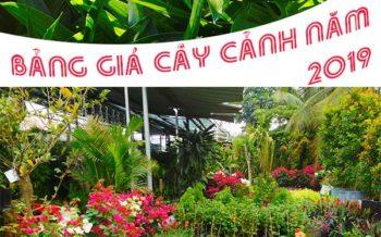 Bang Gia Cay Canh 2019