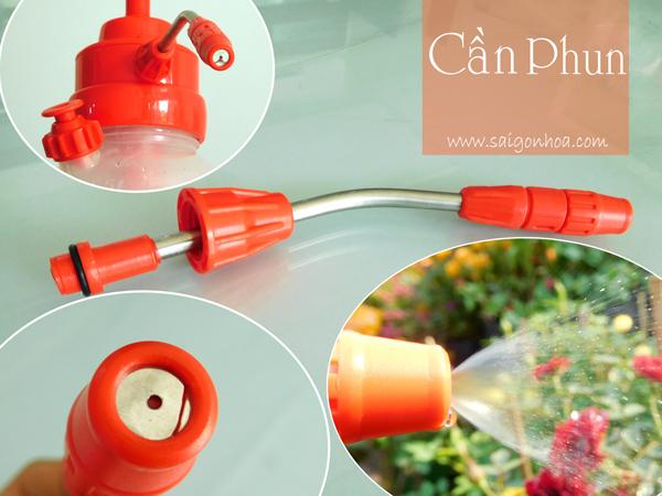Can Phun Tov