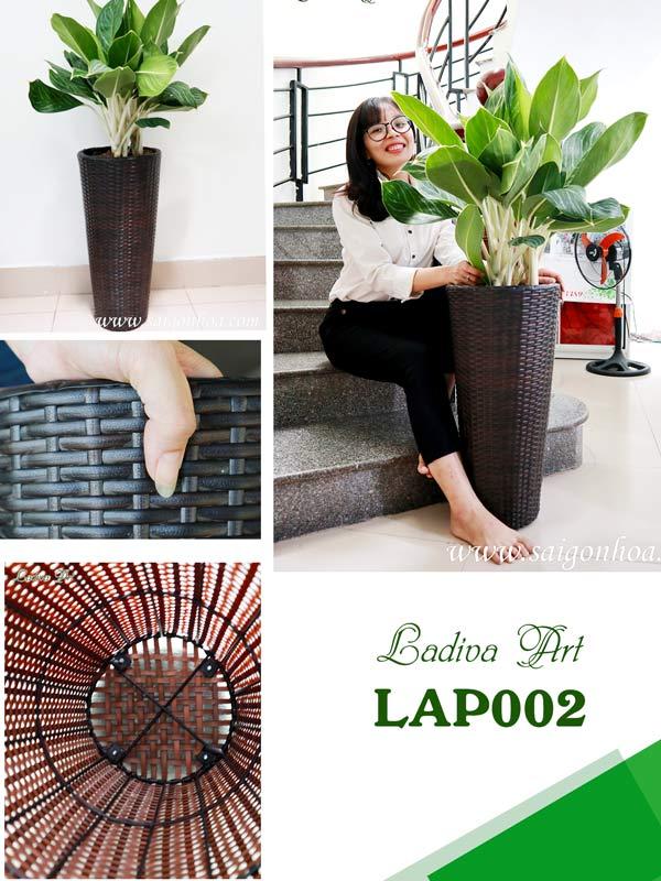 Chau Lap002