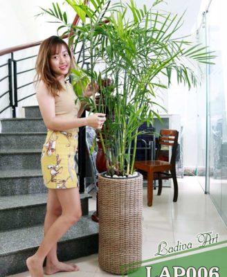 Chau Lap 006