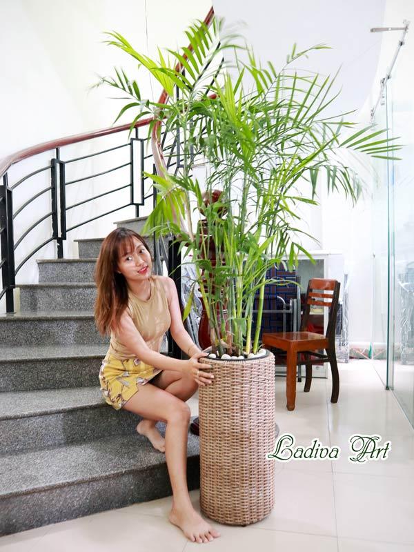 Chau May Lap006
