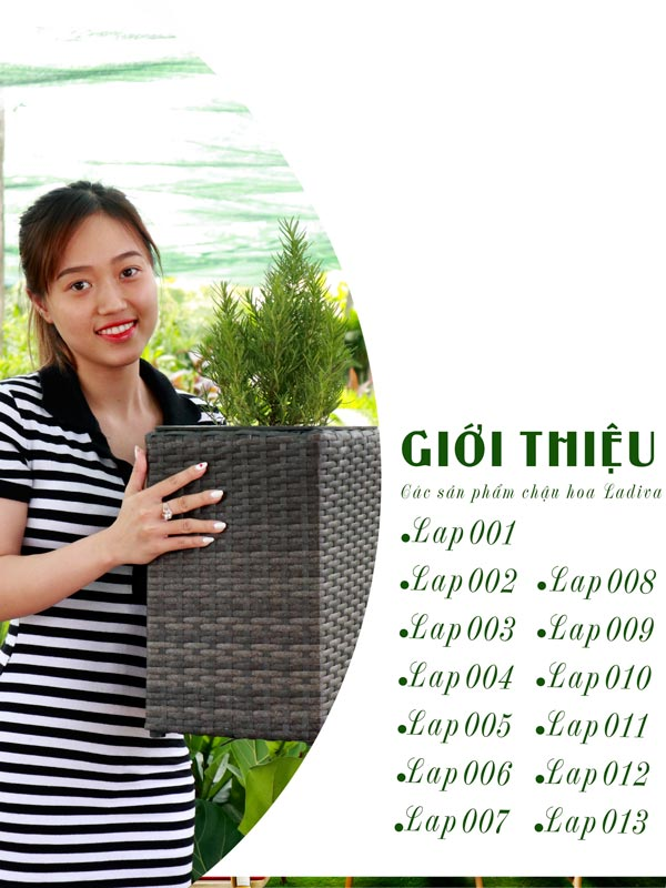 Catalogue Chậu Hoa Ladiva