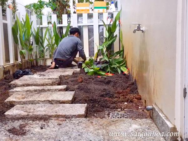 Biến mảnh đất trống quanh nhà thành sân vườn siêu xinh