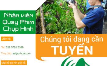 Tuyen Quay Phim Chup Hinh