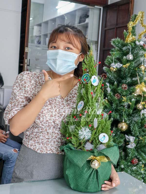 Ban Cay Tung Noel