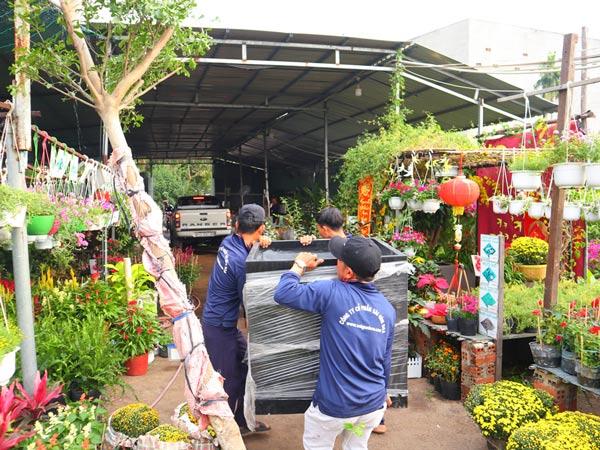 Cung Cap Chau Da Mai 2