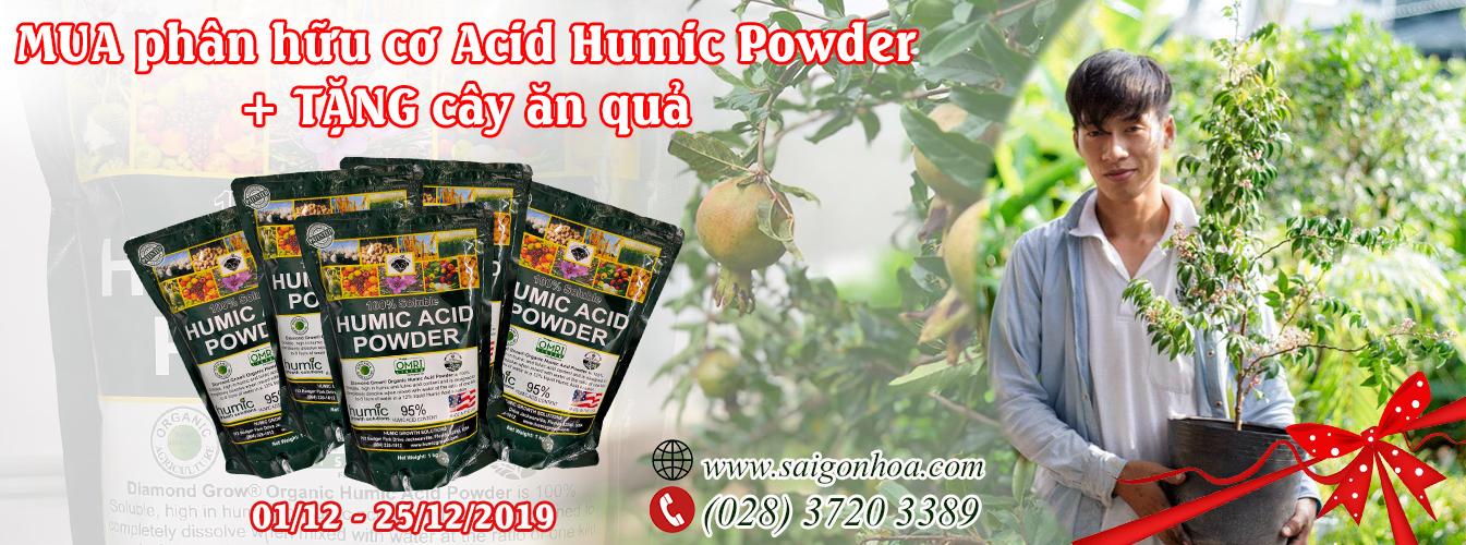 Mua phân hữu cơ Acid Humic Powder tặng cây ăn quả