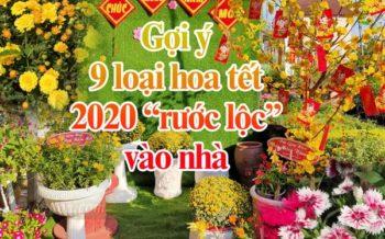 Goi Y Cac Loai Hoa Tet 2020